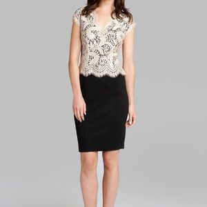 Ted Baker Sarvani Lace Bodice Sheath Dress